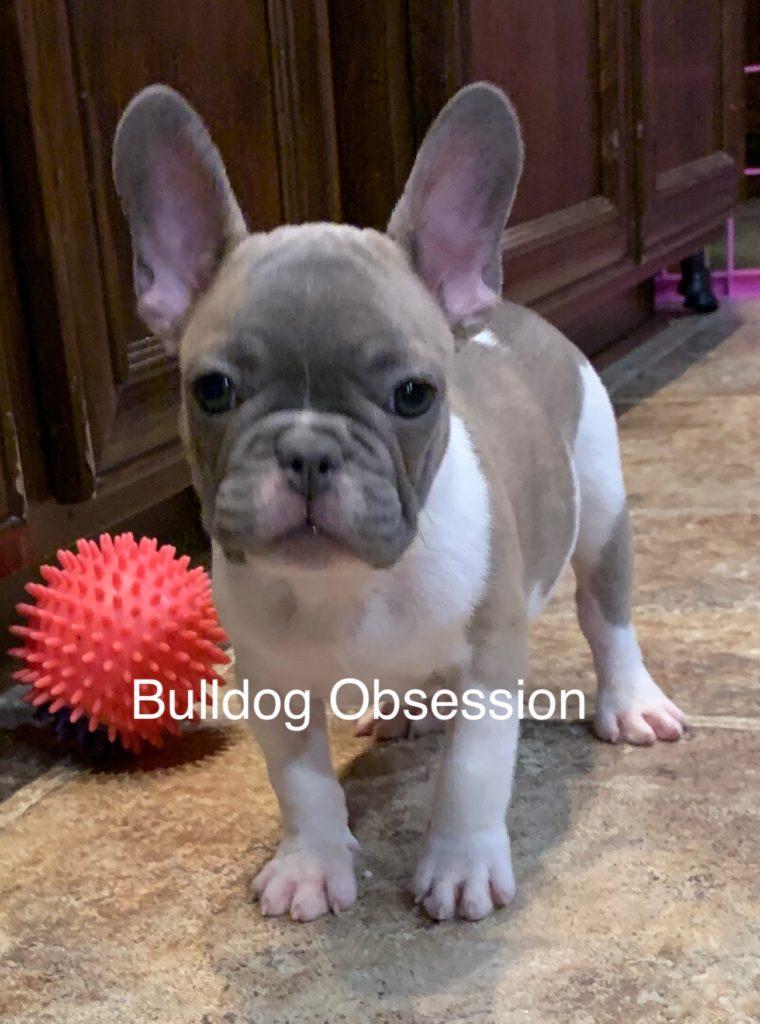 Milton was born on 08/16/2019
